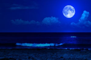 bigstock-Midnight-sea-landscape-with-a--26565551